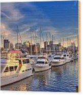 Late Afternoon At Constitution Marina - Charlestown Wood Print