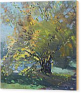 Late Afternoon By The River Wood Print