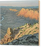 Late Afternoon-desert View Wood Print by Paul Krapf