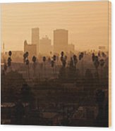 Late Afternoon Over Hollywood Wood Print
