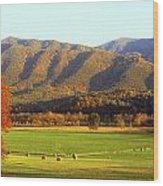 Late Autumn Afternoon In Cades Cove Wood Print