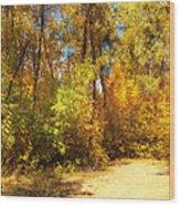 Late Autumn Colours Wood Print
