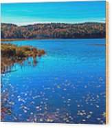Late Autumn On Loon Lake Wood Print