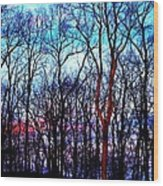 Late Cold Afternoon Wood Print by Jose Lopez