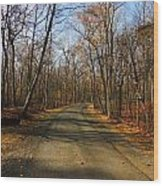 Late Fall At Cheesequake State Park Wood Print