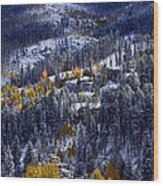 Late Fall In Vail Wood Print
