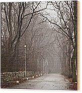 Late Fall Walk Wood Print