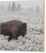 Late Fall Yellowstone Wood Print