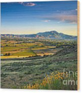 Late Spring Time View Wood Print by Robert Bales