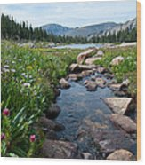 Late Summer Mountain Landscape Wood Print
