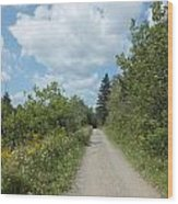 Late Summer Trail Wood Print