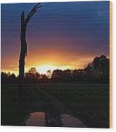 Late Sunset And Tree Wood Print