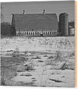 Late Winter At A Wisconsin Farm Wood Print