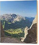 Latemar Mount From Vaiolon Pass Wood Print
