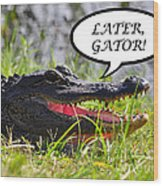 Later Gator Greeting Card Wood Print by Al Powell Photography USA