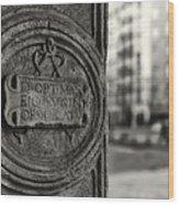 Latin Inscription Wood Print