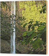 Latourell Falls I Wood Print