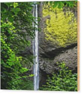 Latourelle Falls Wood Print