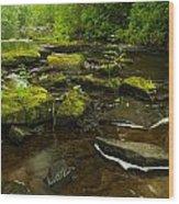 Laughing Fish River Wood Print by Thomas Pettengill