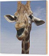 Laughing Giraffe Wood Print