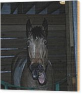 Laughing Horse Wood Print