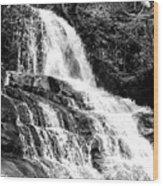 Laurel Falls Smoky Mountains 2 Bw Wood Print