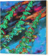 Laurel Fence 3 Wood Print