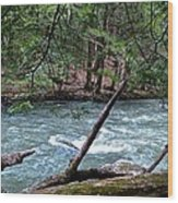 Laurel Hill Creek Hemlock Overlook Wood Print
