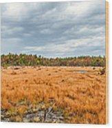 Laurel Summit State Park Bog Wood Print