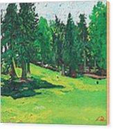 Laurelhurst Park Wood Print