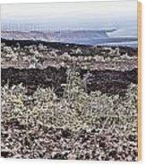 Lava Landscaped Wood Print