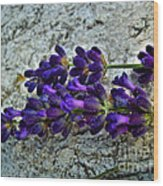 Lavender On White Stone Wood Print