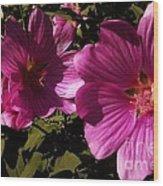 Lavatera - A Study In Pink Wood Print