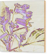 Lavender And Gold Wood Print