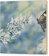 Lavender And The Butterfly Wood Print