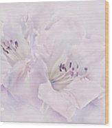 Lavender Azalea Flowers Wood Print