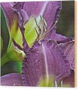 Lavender Beauties Wood Print