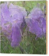 Lavender Blue Iris Garden Wood Print