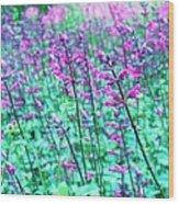 Lavender Color Flowers Wood Print