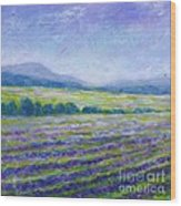 Lavender Field In Provence Wood Print