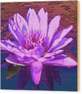 Lavender Lily Wood Print