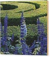 Lavender Maze Wood Print