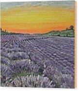 Lavender Oasis Wood Print