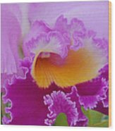 Lavender Orchid Wood Print