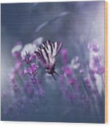Lavender Queen... Wood Print