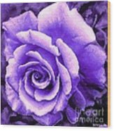 Lavender Rose With Brushstrokes Wood Print