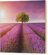 Lavender Sunrise Wood Print