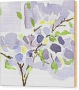 Lavender With Missouri Dogwood In The Window Wood Print