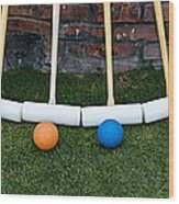 Lawn Games Wood Print