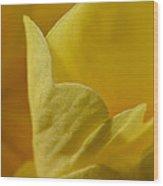 Layered In Yellow Wood Print